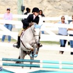 Horse Show Bermuda Nov 26 2015 (16)