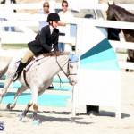 Horse Show Bermuda Nov 26 2015 (17)