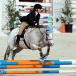 Horse Show Bermuda Nov 26 2015 (19)