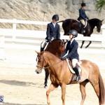 Horse Show Bermuda Nov 26 2015 (2)