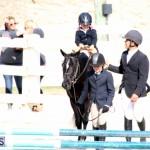 Horse Show Bermuda Nov 26 2015 (4)