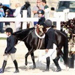 Horse Show Bermuda Nov 26 2015 (5)