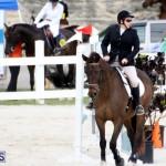 Horse Show Bermuda Nov 26 2015 (6)