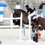 Horse Show Bermuda Nov 26 2015 (7)