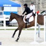 Horse Show Bermuda Nov 26 2015 (8)
