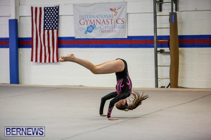 International-Gymnastics-Challenge-Bermuda-November-14-2015-10