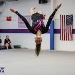 International Gymnastics Challenge Bermuda, November 14 2015-13