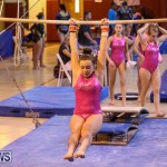 International Gymnastics Challenge Bermuda, November 14 2015-18