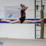 International Gymnastics Challenge Bermuda, November 14 2015-2