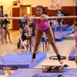 International Gymnastics Challenge Bermuda, November 14 2015-20