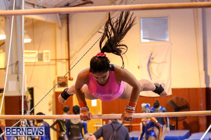 International-Gymnastics-Challenge-Bermuda-November-14-2015-21