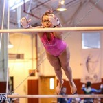 International Gymnastics Challenge Bermuda, November 14 2015-25