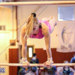 International Gymnastics Challenge Bermuda, November 14 2015-27