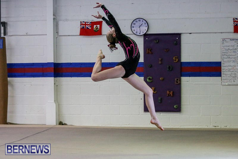 st jude gymnastics meet 2012 results
