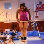 International Gymnastics Challenge Bermuda, November 14 2015-30
