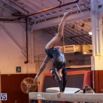 International Gymnastics Challenge Bermuda, November 14 2015-33