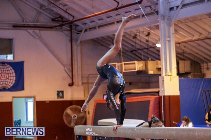 International-Gymnastics-Challenge-Bermuda-November-14-2015-33