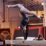 International Gymnastics Challenge Bermuda, November 14 2015-34