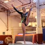 International Gymnastics Challenge Bermuda, November 14 2015-37