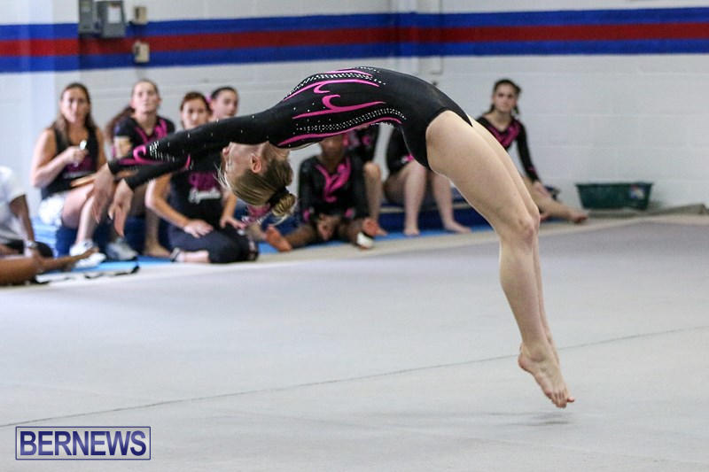 International-Gymnastics-Challenge-Bermuda-November-14-2015-4