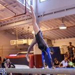 International Gymnastics Challenge Bermuda, November 14 2015-41
