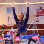 International Gymnastics Challenge Bermuda, November 14 2015-44