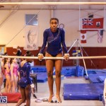 International Gymnastics Challenge Bermuda, November 14 2015-45
