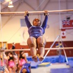International Gymnastics Challenge Bermuda, November 14 2015-46