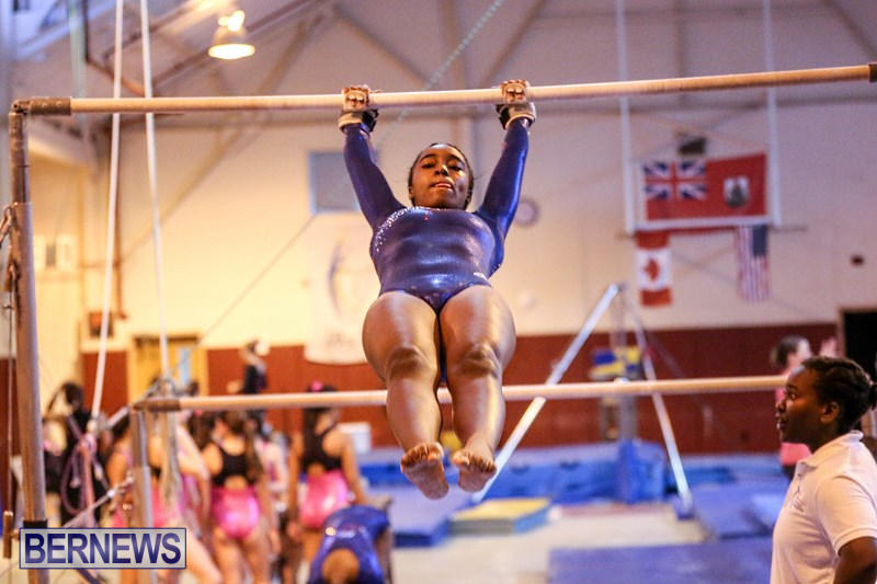 International-Gymnastics-Challenge-Bermuda-November-14-2015-46