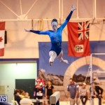 International Gymnastics Challenge Bermuda, November 14 2015-70