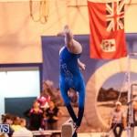International Gymnastics Challenge Bermuda, November 14 2015-72