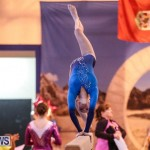 International Gymnastics Challenge Bermuda, November 14 2015-73