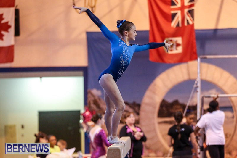 International-Gymnastics-Challenge-Bermuda-November-14-2015-74