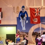 International Gymnastics Challenge Bermuda, November 14 2015-75
