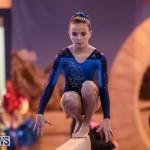 International Gymnastics Challenge Bermuda, November 14 2015-77