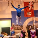 International Gymnastics Challenge Bermuda, November 14 2015-78