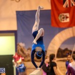 International Gymnastics Challenge Bermuda, November 14 2015-79