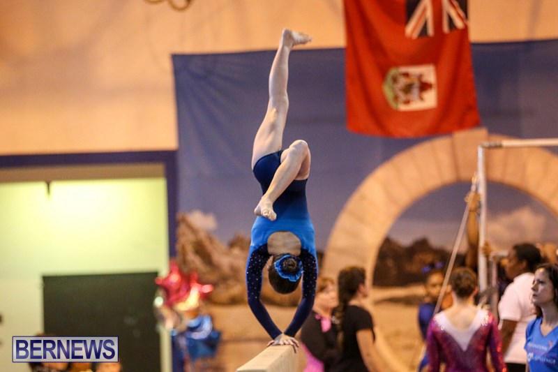 International-Gymnastics-Challenge-Bermuda-November-14-2015-79