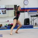 International Gymnastics Challenge Bermuda, November 14 2015-8