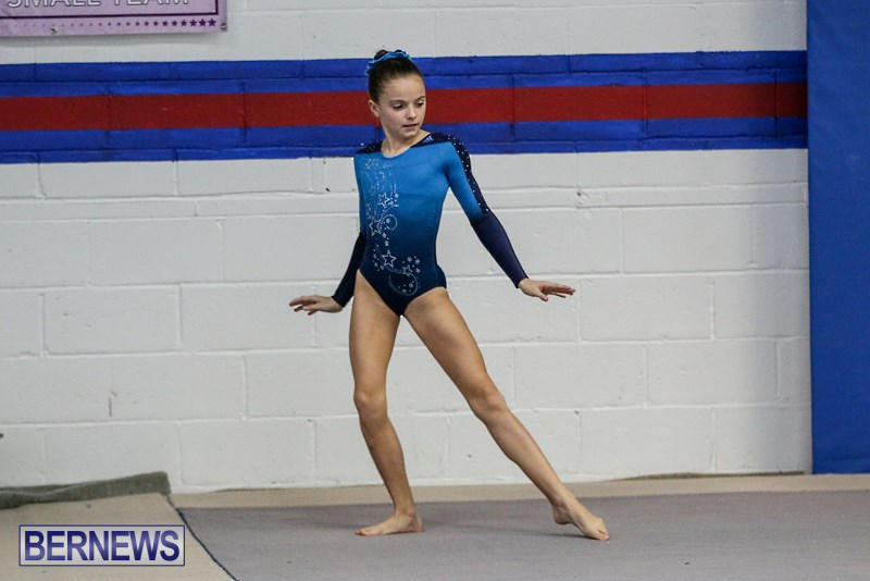 International-Gymnastics-Challenge-Bermuda-November-14-2015-80