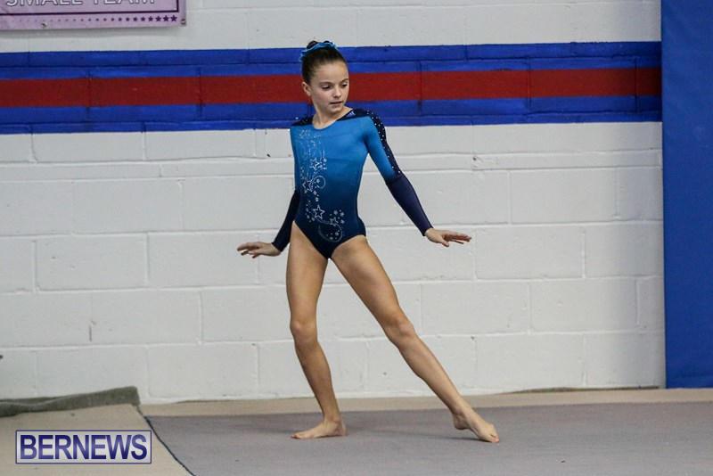 gateway challenge gymnastics meet 2011
