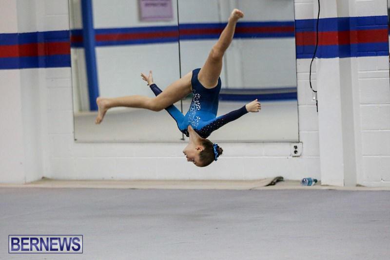 International-Gymnastics-Challenge-Bermuda-November-14-2015-82