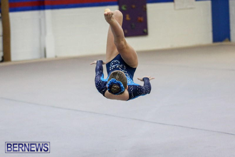 International-Gymnastics-Challenge-Bermuda-November-14-2015-84