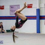 International Gymnastics Challenge Bermuda, November 14 2015-9