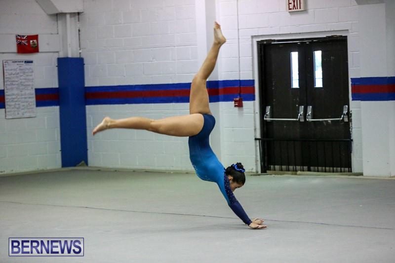 International-Gymnastics-Challenge-Bermuda-November-14-2015-90