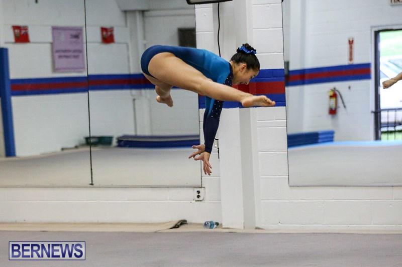 International-Gymnastics-Challenge-Bermuda-November-14-2015-91