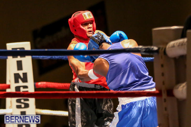 Keanu Wilson vs Courtney Dublin Boxing Match Bermuda, November 7 2015-13