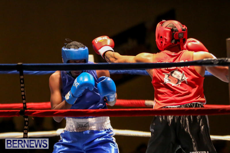 Keanu Wilson vs Courtney Dublin Boxing Match Bermuda, November 7 2015-16