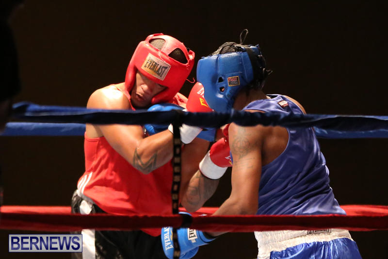 Keanu Wilson vs Courtney Dublin Boxing Match Bermuda, November 7 2015-19