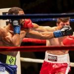 Nikki Bascome vs Pilo Reyes Boxing Match Bermuda, November 8 2015-11
